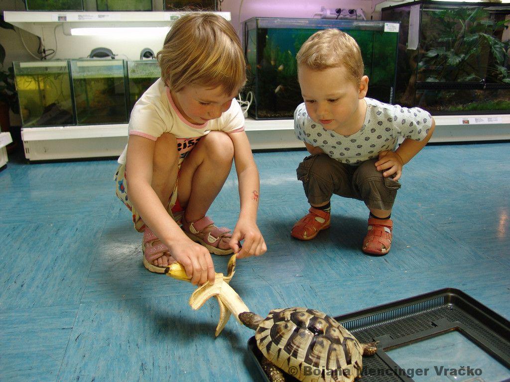 Prakticno-delo-otrok-v-vivariju-FNM (1)