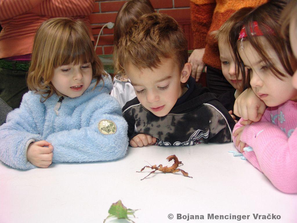 Prakticno-delo-otrok-v-vivariju-FNM (2)
