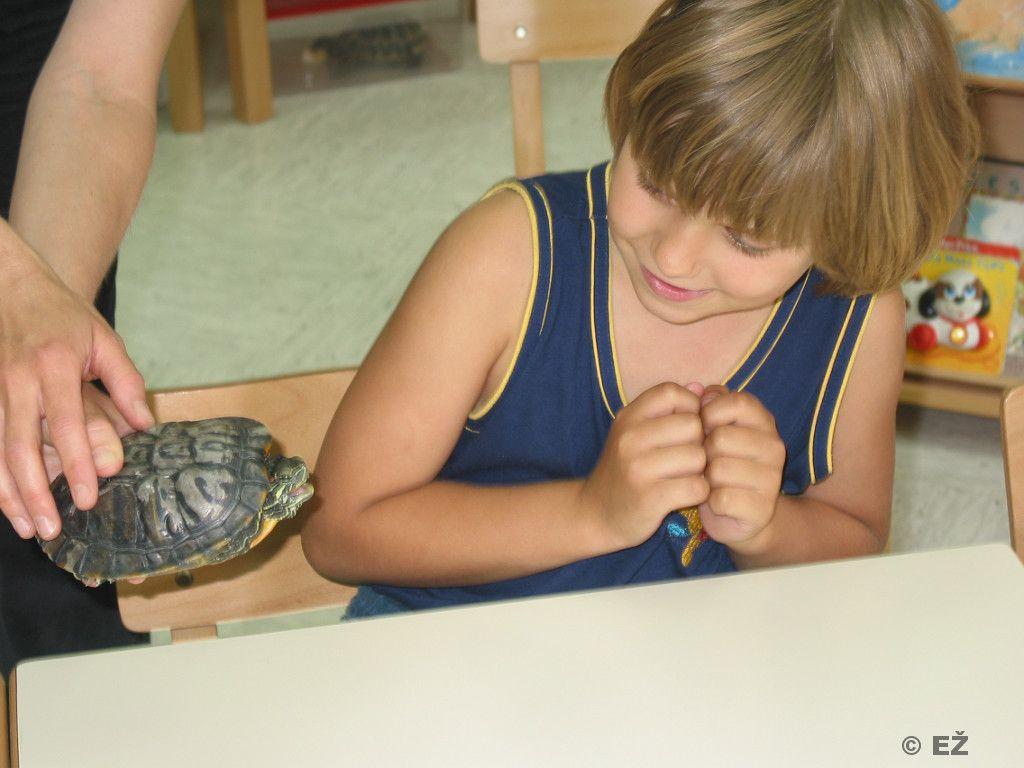 Prakticno-delo-otrok-v-vivariju-FNM (3)