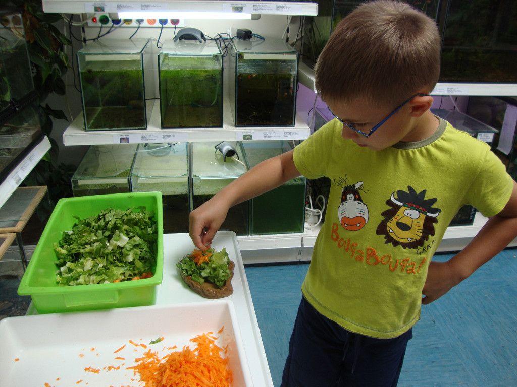 Prakticno-delo-otrok-v-vivariju-FNM (4)